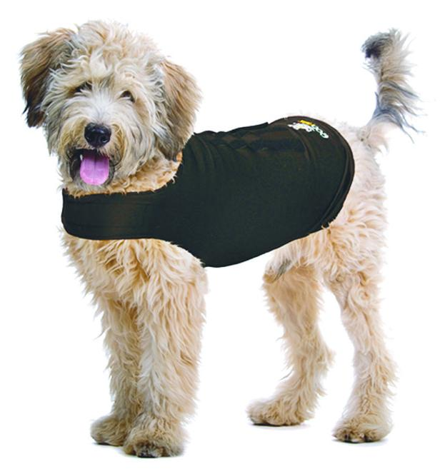ZenDog Calming Compression Shirt by ZenPet