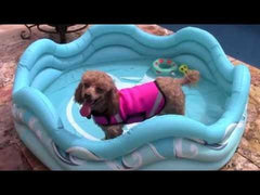 Mariner Inflatable Pool - Keep Doggie Safe