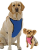 Kumfy Tailz Cooling Harness - Keep Doggie Safe