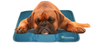 Cool Pet Dog Cooling Pad - Keep Doggie Safe