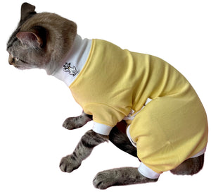 Tulane's Closet Cat Post Surgery Onesie