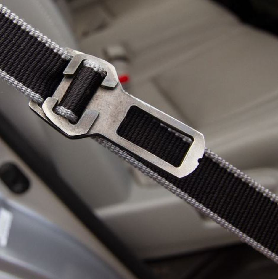 Leash to Seatbelt Buckle