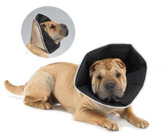 All Four Paws Comfy Cone e-Collar for Dogs - Keep Doggie Safe
