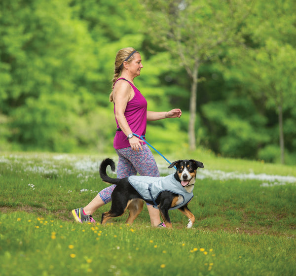 Kurgo Dog Core Cooling Vest