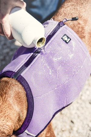 Hurtta Evaporating Cooling Dog Vest