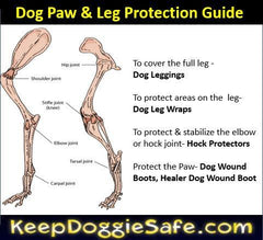 Dog Hock Protector - Keep Doggie Safe