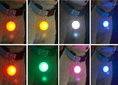 Spotlit Dog Collar Light