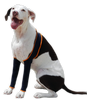 Dog Leg Wraps | Leggings - Keep Doggie Safe