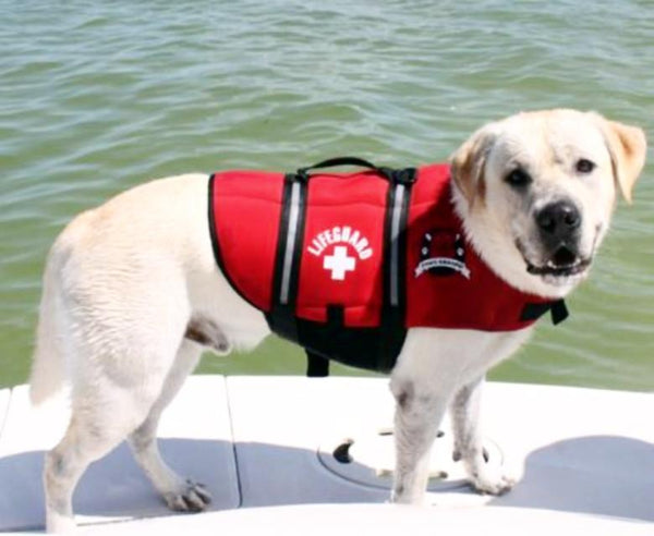 Bright Red Life Jacket - Keep Doggie Safe