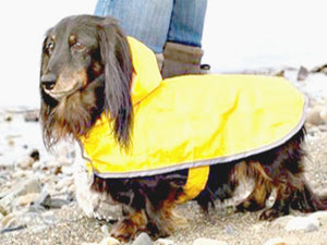 Packable Dog Raincoat - Keep Doggie Safe