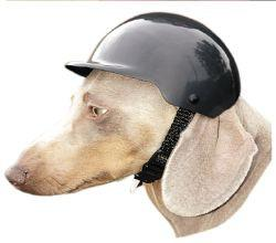 Dog Safety Helmet