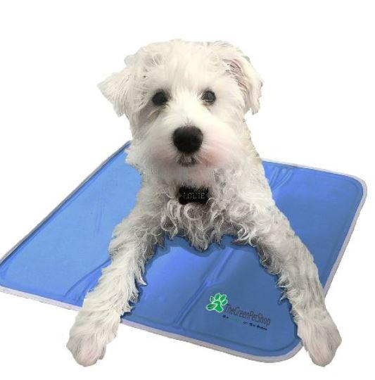 Dog Cooling Pad No Water Needed Keep Doggie Safe