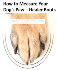 Healers Urban Walkers Dog Boots - Great for Cold, Heat & Terrain