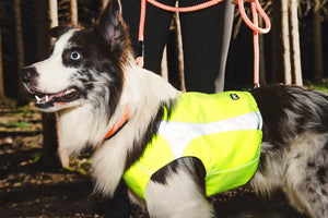 Hurtta Polar Visibility Warming Dog Vest