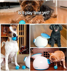 ifetch Dog Ball Machine for Small & Medium Dogs - Keep Doggie Safe