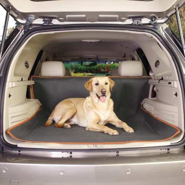 Insect Shield Dog Cargo Cover - Keep Doggie Safe