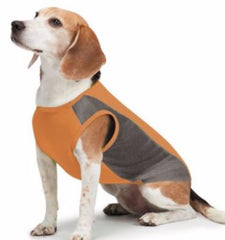 Insect Shield Dog Mesh Tank Top-SALE - Keep Doggie Safe