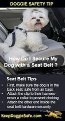 Kurgo Seat Belt Loop - Keep Doggie Safe