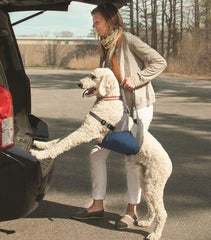Kurgo Up & About Dog Lifter - Keep Doggie Safe