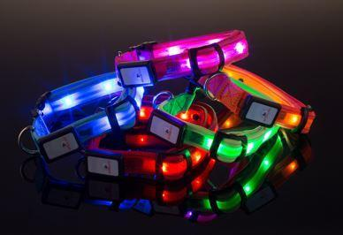 Nitebeam LED Dog Collar - Keep Doggie Safe
