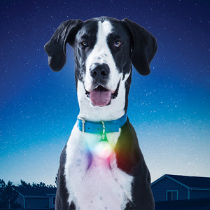 Nite Ize SpotLit  XL Rechargeable Disco-O Select Dog Collar Light
