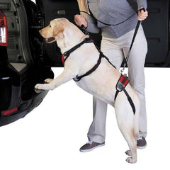 Lift n Go Back & Front Harness
