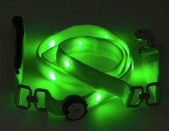 Nitebeam LED Lighted Dog Leash - Keep Doggie Safe