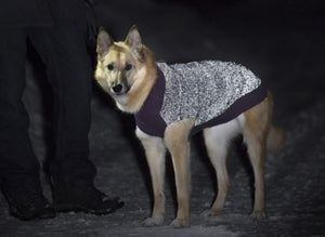 Polaris Reflective Dog Sweater