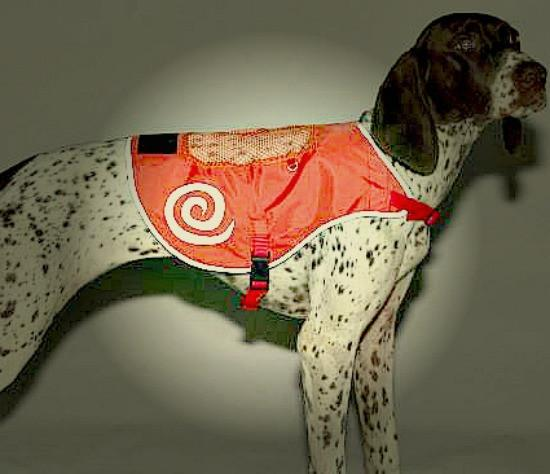 Safety Orange Reflective Vest- SALE - Keep Doggie Safe