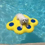Paw Shaped Dog Life Raft