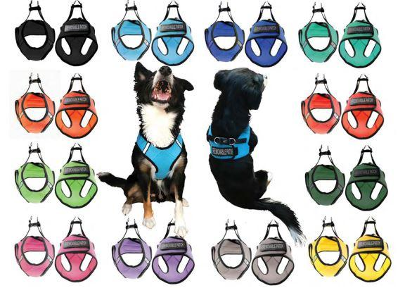 Soft Mesh Service Dog Harness - NEW !