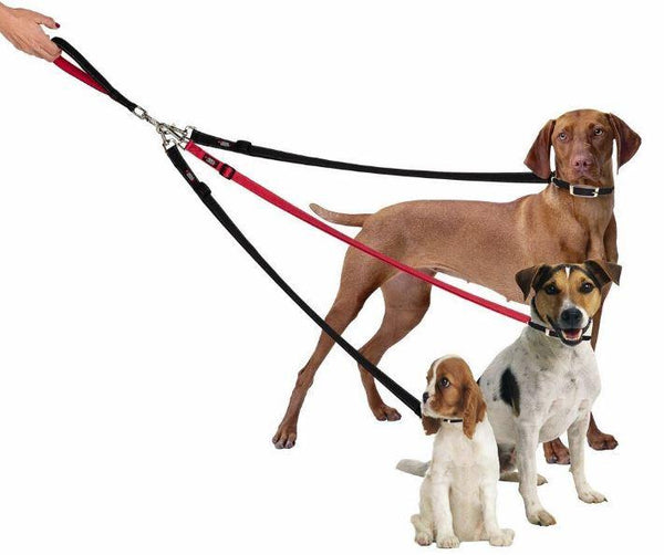 Three Dog Tangle-Free Triple Leash