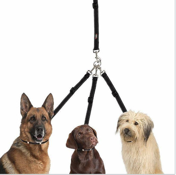Three Dog  Tangle-Free Tripler - Keep Doggie Safe
