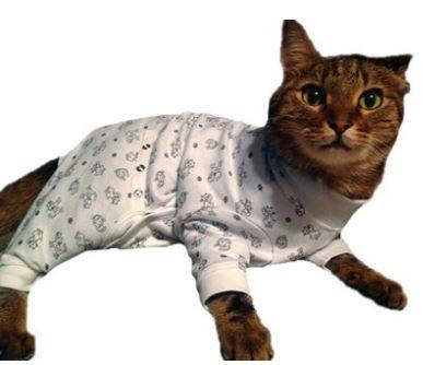 4510538a7a8 Tulane s Closet Cat Post Surgery Onesie – Keep Doggie Safe