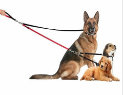 Two Dog Tangle-Free Dual Leash - Keep Doggie Safe