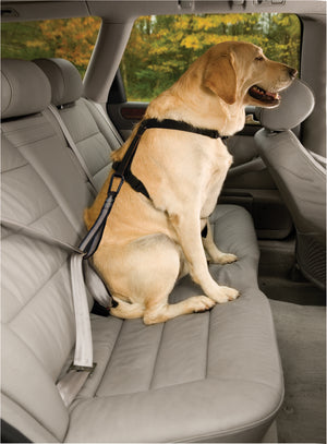 Kurgo Seat Belt Tether With Carabiner