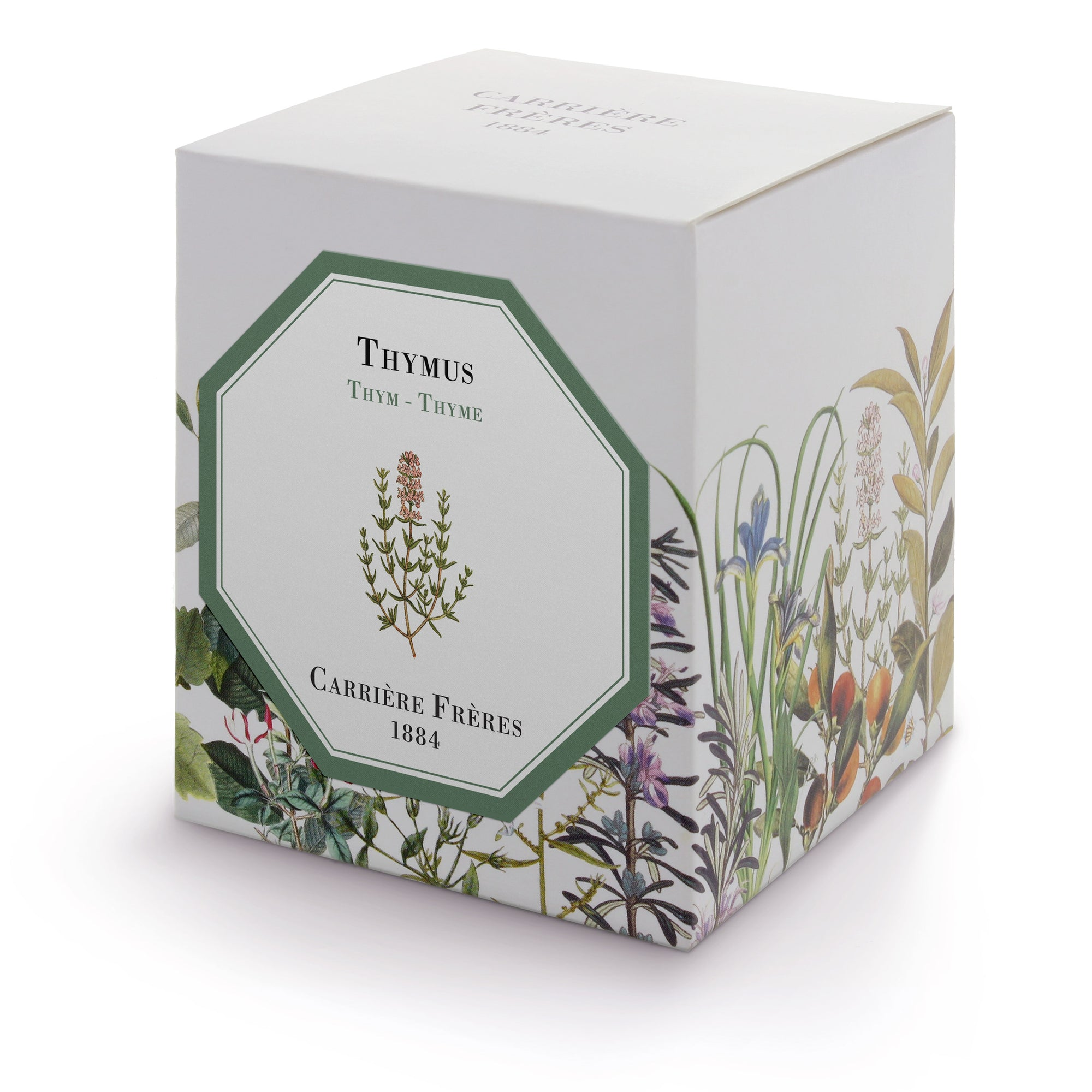 Scented Candle~Thyme (Thymus)