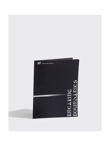 Breaking Boundaries Zine