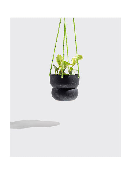 "6"" Bubble Hanging Planter in Black"