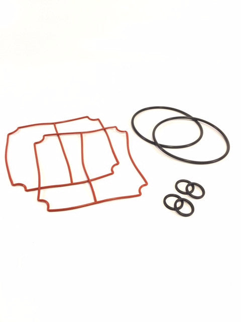 Service Seal Kit for 'Big Brother' Oilless Vacuum Pump