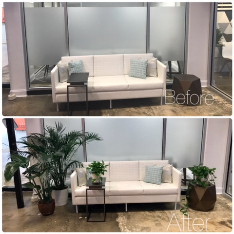 before and after waiting area office