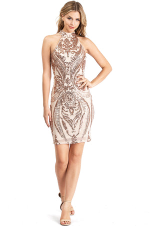 Starlight Sequin Dress