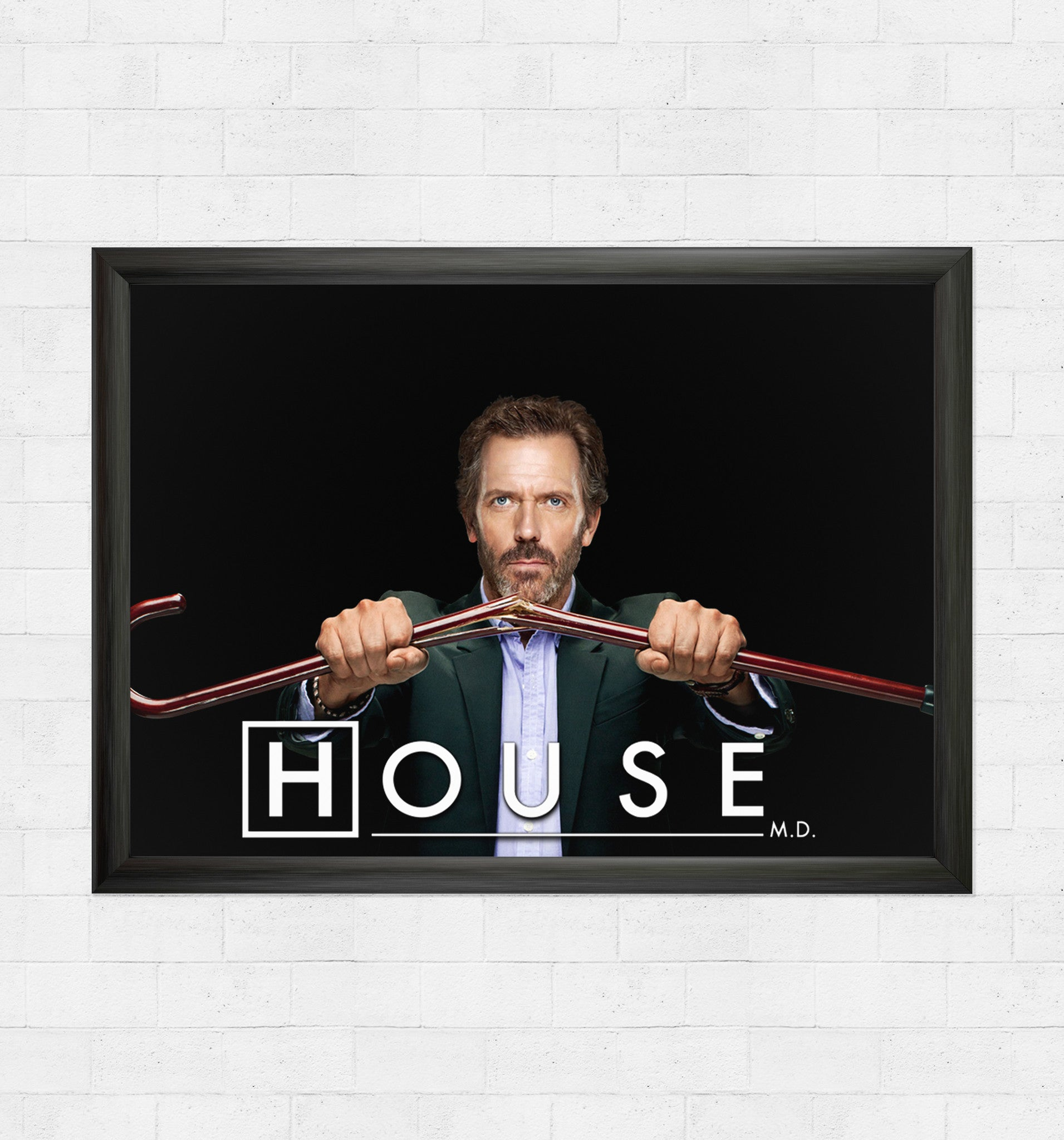 house md cane and able poster in india by sillypunter silly punter. Black Bedroom Furniture Sets. Home Design Ideas