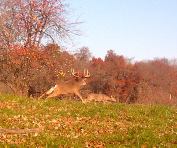 Trying to shoot a big buck? There's an app for that.