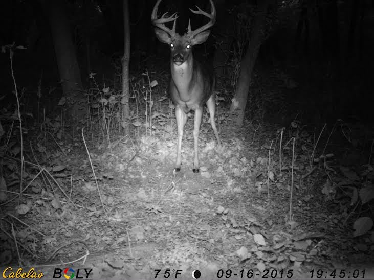 Early Season Trail Camera Locations