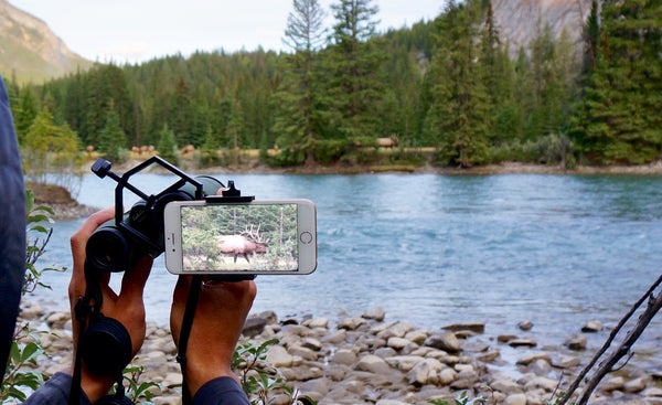 Fighting Squirrel Smartphone Optic Mount