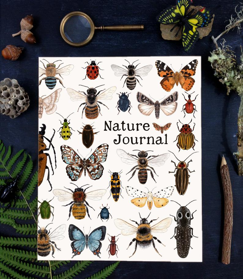 Nature Journal, Insects Cover - Preorder - Free Postage in UK