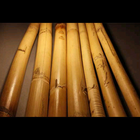 Rattan Ugly Sticks -  15 Sticks (for March)