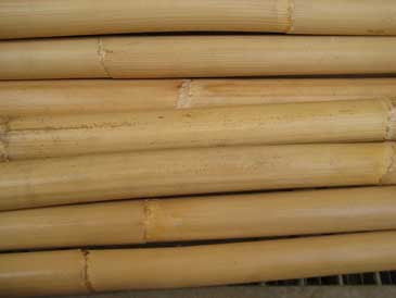 Student Sticks (pair, raw rattan)