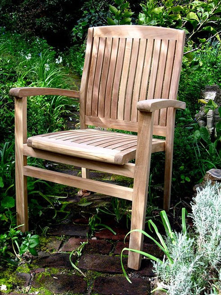 Napa Arm Chair